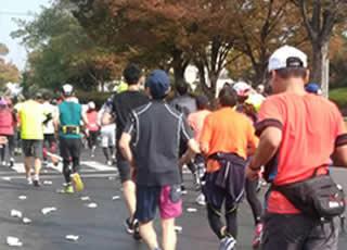 11月 岡山マラソン